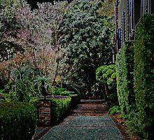 Garden Path by mrthink