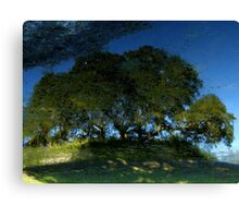 Nature's Mirror ~ Part Two Canvas Print
