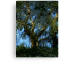 Nature's Mirror ~ Part Three Canvas Print