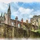 The ruins of Selskar Abbey, County Wexford, Ireland by buttonpresser