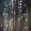 Bubbles by Katarina Kuhar