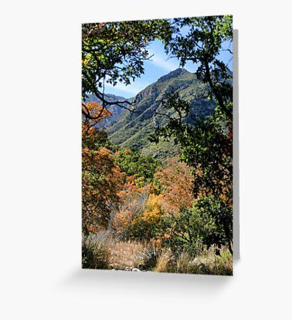 McKittrick Canyon (3) Greeting Card