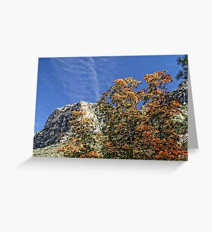 McKittrick Canyon (8) Greeting Card