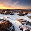 Winters Last Grip by Chris Miles