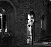 Cong Abbey by Nicola Lee