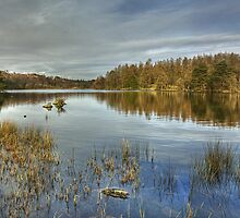 High Dam...A Wider View by Jamie  Green