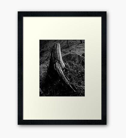 Man Made Framed Print