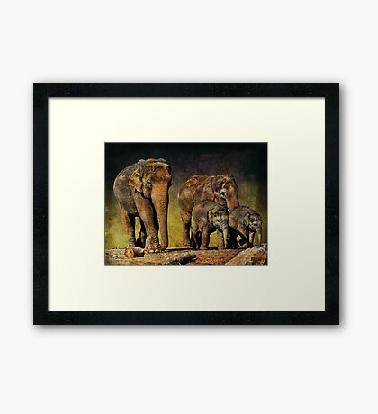 Family Unit Framed Print