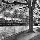Canal Path by Katherine Maguire