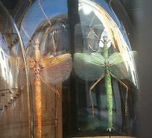 Bugs.. by Elorac