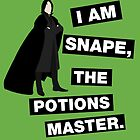 The potions master by nimbusnought