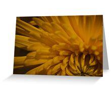 Yellow Dahlia 2  Greeting Card