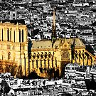 Cathdrale Notre Dame de Paris by Thomas Splietker