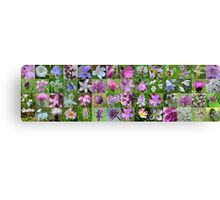 Mauve & White Wild Flowers of Argyll Canvas Print