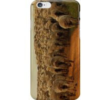 Sheep Run 1 iPhone Case/Skin