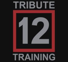 Tribute Training District 12 by waywardtees