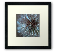 Wintery Wonderland Framed Print