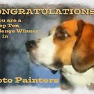 Banner Challenge Photo Painters by Eve Parry