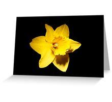 Yellow Daffodil on Black Greeting Card