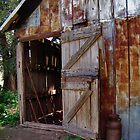 The Old Barn Door by Elizabeth Burton