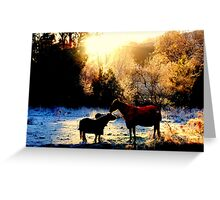 Defrost Greeting Card