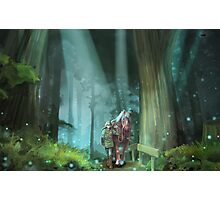 The Zelda Legend Photographic Print