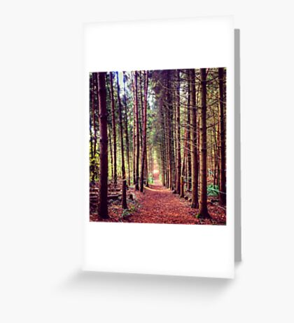 Autumnal Hues Landscape Photography Greeting Card