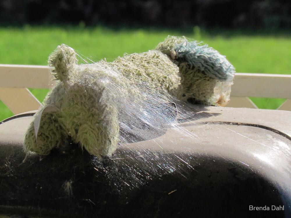 Abandoned for summer fun~ by Brenda Dahl
