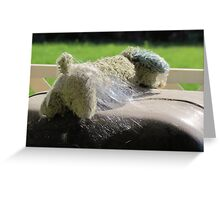 Abandoned for summer fun~ Greeting Card