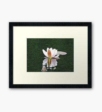 Never Be Afraid to Bloom & Shimmer Framed Print
