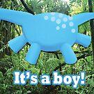It's a boy by Koekelijn