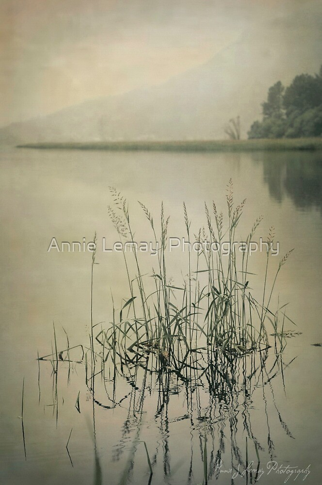 The Calming by Annie Lemay  Photography