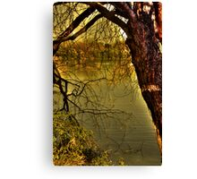 Withered old tree Canvas Print