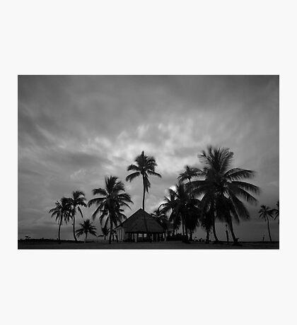 Chapel amongst the palm trees Photographic Print