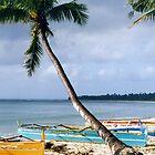 Filipino Tropical Beach by Jane McDougall