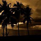 Fiji Sunset by Andrew  MCKENZIE