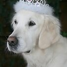 Princess Ditte of Denmark by Trine