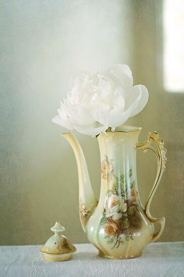 Still Life with Peony by AnnieD