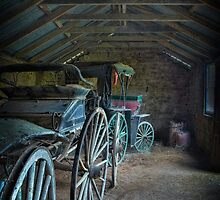 The Carriage Collection by Dianne English