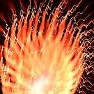 fireworks 25/10/15 by david gilliver