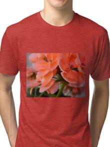 Spring in my Backyard-III     ^ Tri-blend T-Shirt