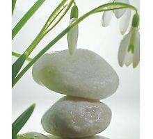 Balance by Aviana