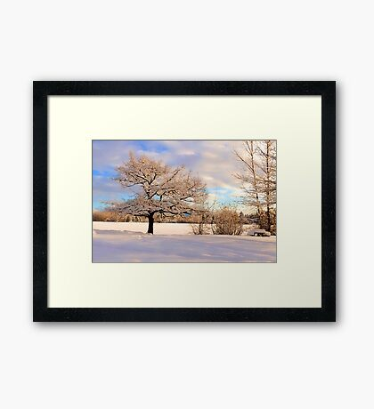 Winter At Mill Lake Framed Print