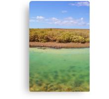 Little Lagoon Creek Canvas Print