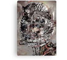 CHESHIRE 88088 SW Canvas Print