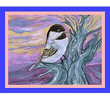 Chickadee in a tree Photographic Print
