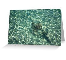 Whimsical Water Works - Crystal Clear Med and Fishes - Take Two Greeting Card