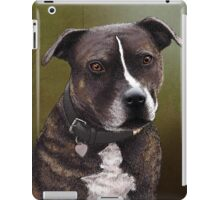 Stafforshire bull terrier 1 iPad Case/Skin