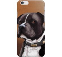 Staffordshire bull terrier 2 iPhone Case/Skin