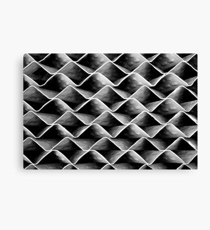 Complex Curve Canvas Print